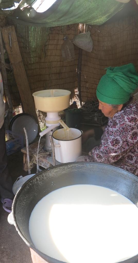 chauffe du lait